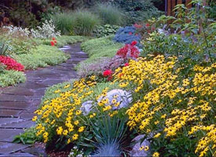 Mantenimiento de jardines mantenimiento de parques party for Decoracion de jardines y parques