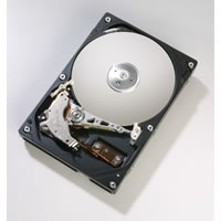 250GB Maxtor 7200RPM, 8MB IDE